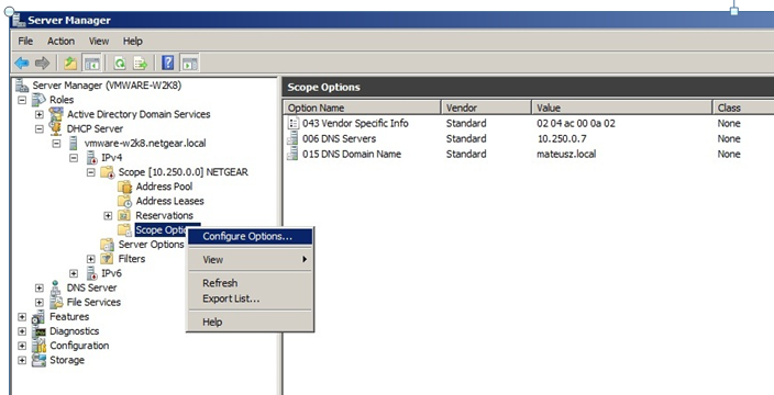 How do I configure DHCP option 43 on a Windows Server