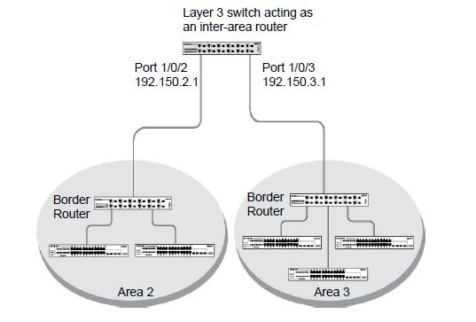 How do I configure Open Shortest Path First (OSPF) on a border